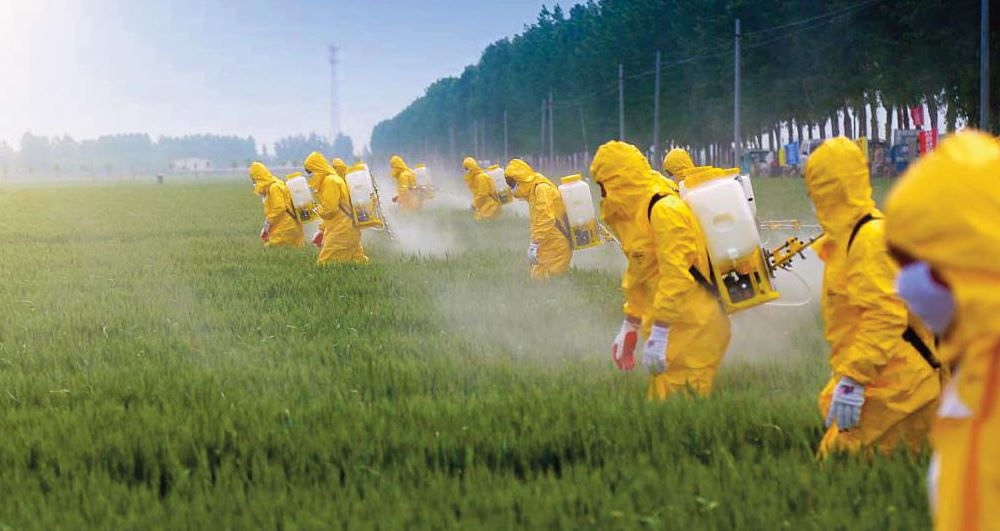 Pesticides, vers une indemnisation ?